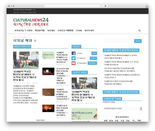 Newspaper newspaper WordPress theme - culturalnews24.com