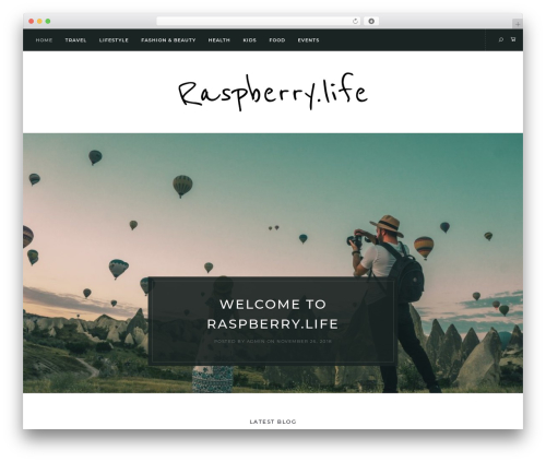 WordPress theme Solien - raspberry.life