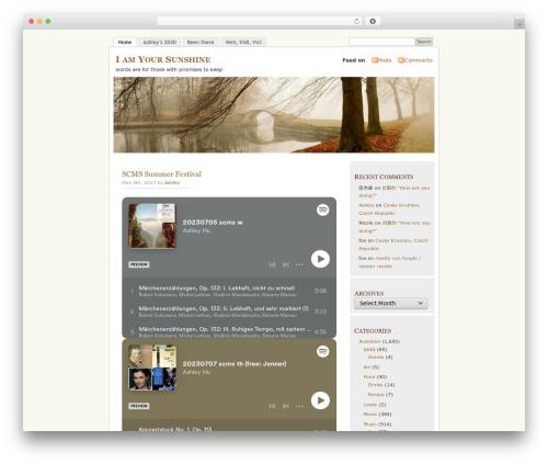 Best WordPress theme MistyLook - iamyoursunshine.com