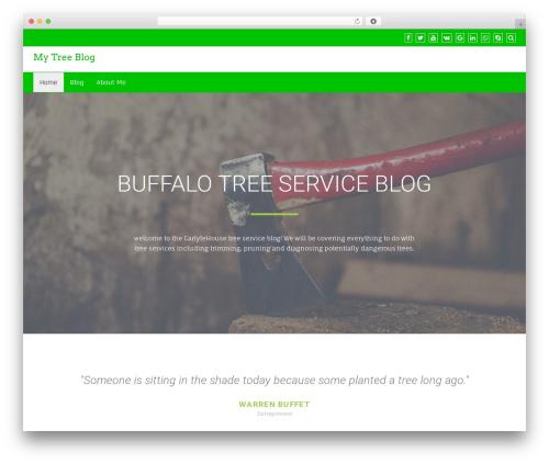 Business Green WordPress blog template - carlylehouse.org