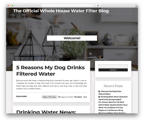 Writer Blog WordPress blog template - wholehousewaterfilter.info