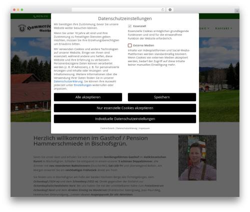 Best WordPress theme Divi - hammerschmiede-bischofsgruen.de