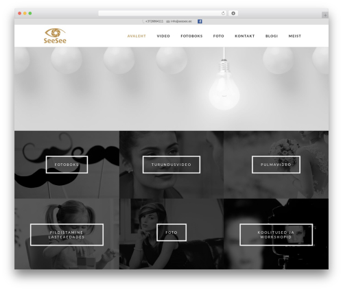 WordPress slick-popup-pro plugin - seesee.ee