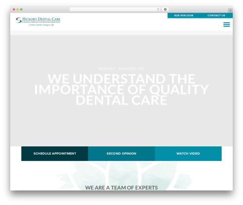Shaggy Rogers best WordPress template - hickorydental.com