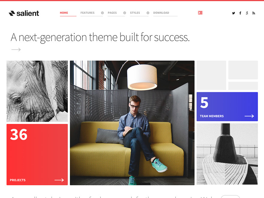 Theme WordPress Salient