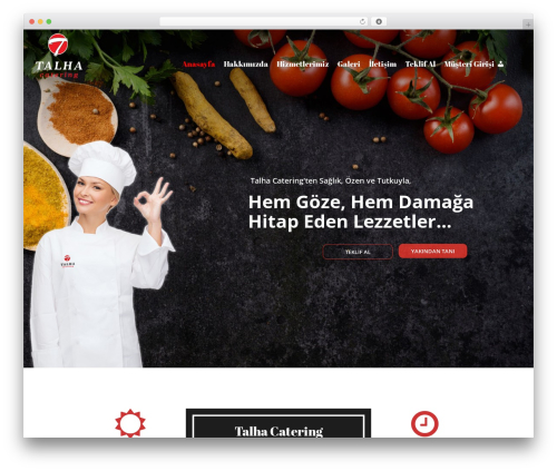 Best WordPress template Catering - talhacatering.com