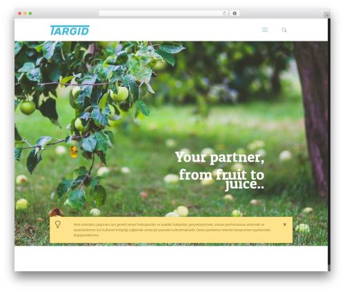Betheme WordPress theme - targid.com