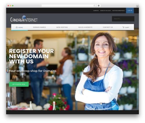 EasyWeb top WordPress theme - candagaonline.com