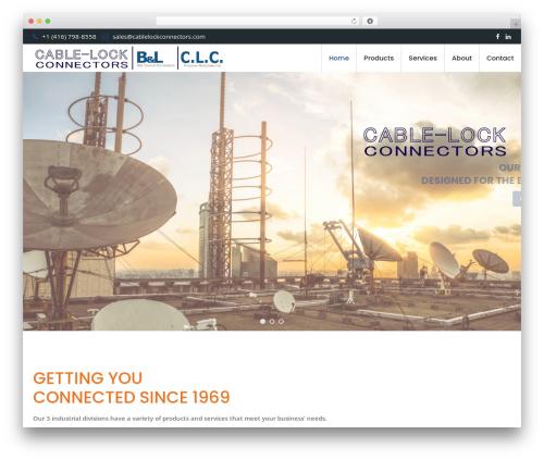 SEOEngine WordPress theme - cablelockconnectors.com