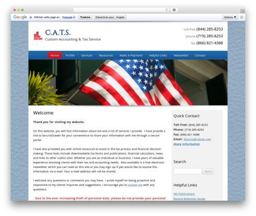 Best WordPress theme Customized - catsak.com