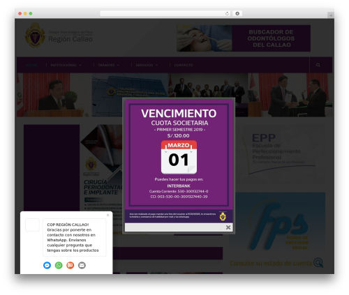 WordPress website template Mega Project - copregioncallao.com