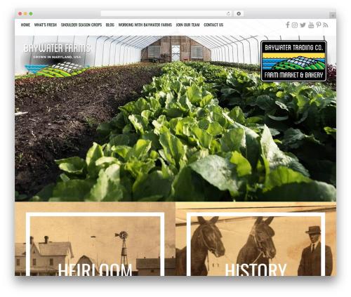 AWI theme WordPress - baywaterfarms.com