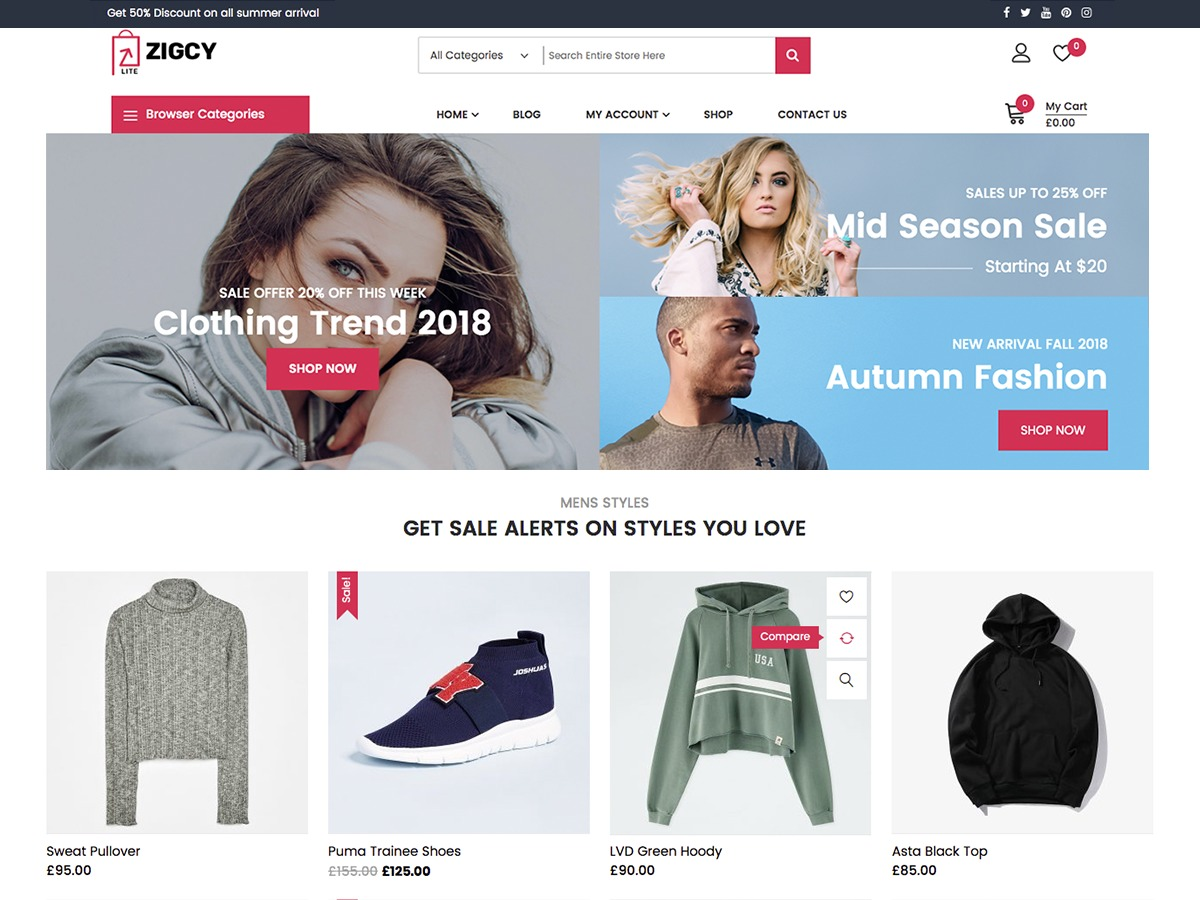 Zigcy Lite best WooCommerce theme