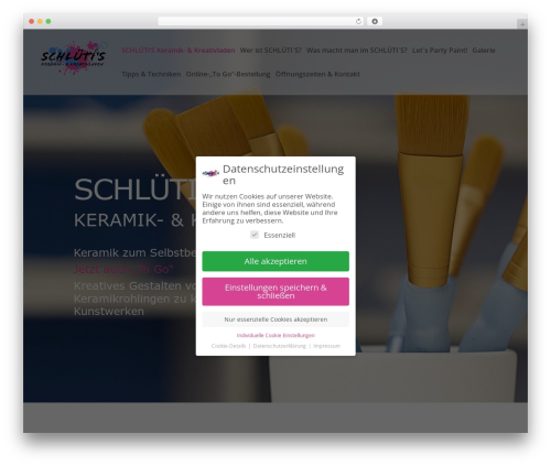 Divi best WordPress template - schluetis.com