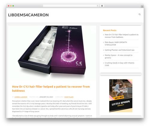 The Best Blog free WordPress theme - libdems4cameron.com