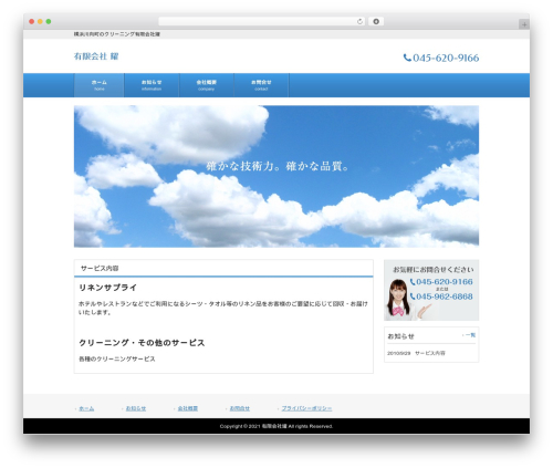 Blue best WordPress theme - kagayaki-cleaning.com
