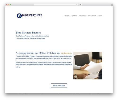 Divi best WordPress theme - bluepartnersfinance.com
