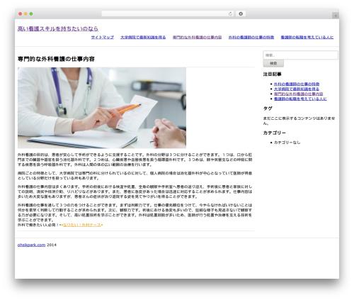 Ohsik WordPress theme free download - pointandshout.com