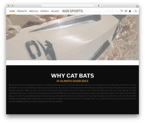 Themify Shoppe WordPress ecommerce template - kgnsports.com