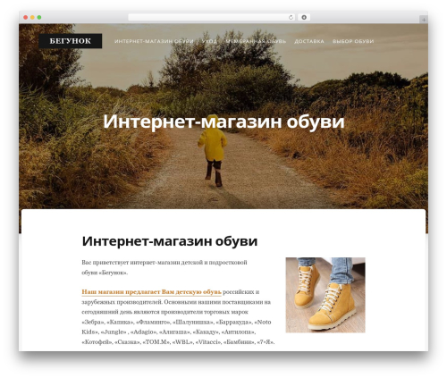 Typit premium WordPress theme - begunok-obuv.ru