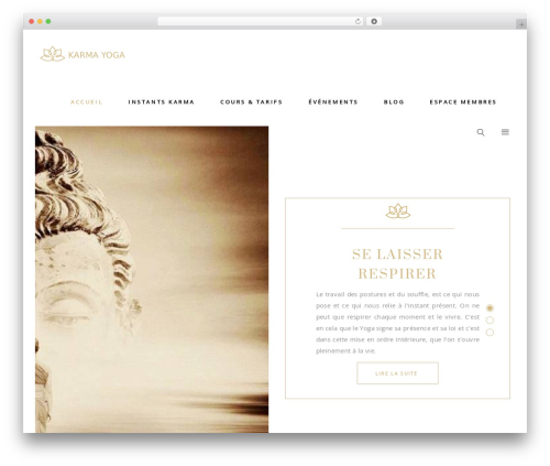 WordPress theme Aviana - karma-yoga.life