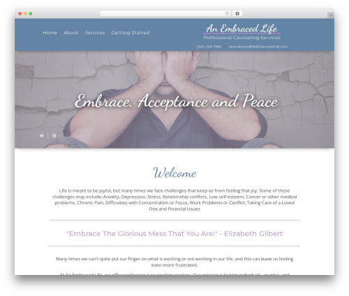 WordPress theme Playful - anembracedlife.com