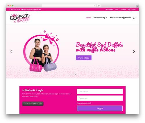 Best WordPress template Divi - horizondance.com
