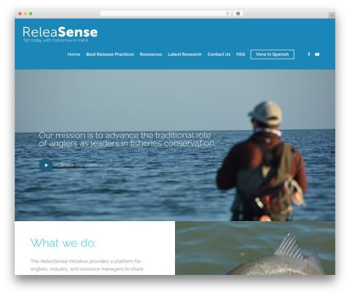Salient WordPress theme design - releasense.org