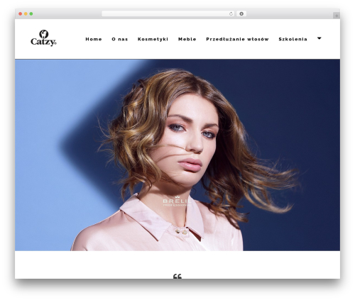 Skylar WordPress website template - catzy.pl