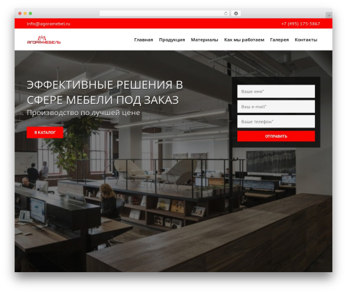 Best WordPress theme agora - agoramebel.ru