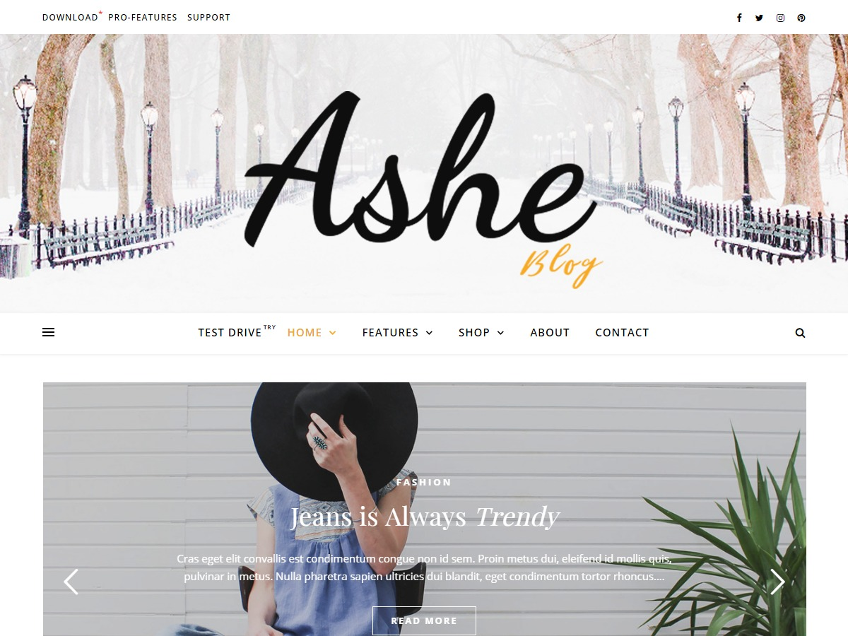 Ashe WordPress template for photographers