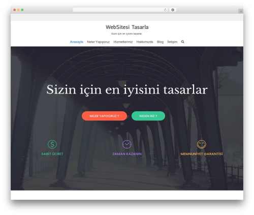 Neve WordPress theme - websitesitasarla.com
