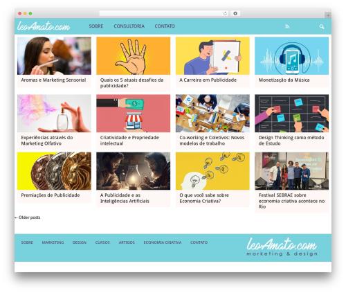 SSMAG WordPress theme - leoamato.com