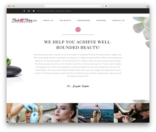 WordPress website template Aviana - redroserejuvenation.com