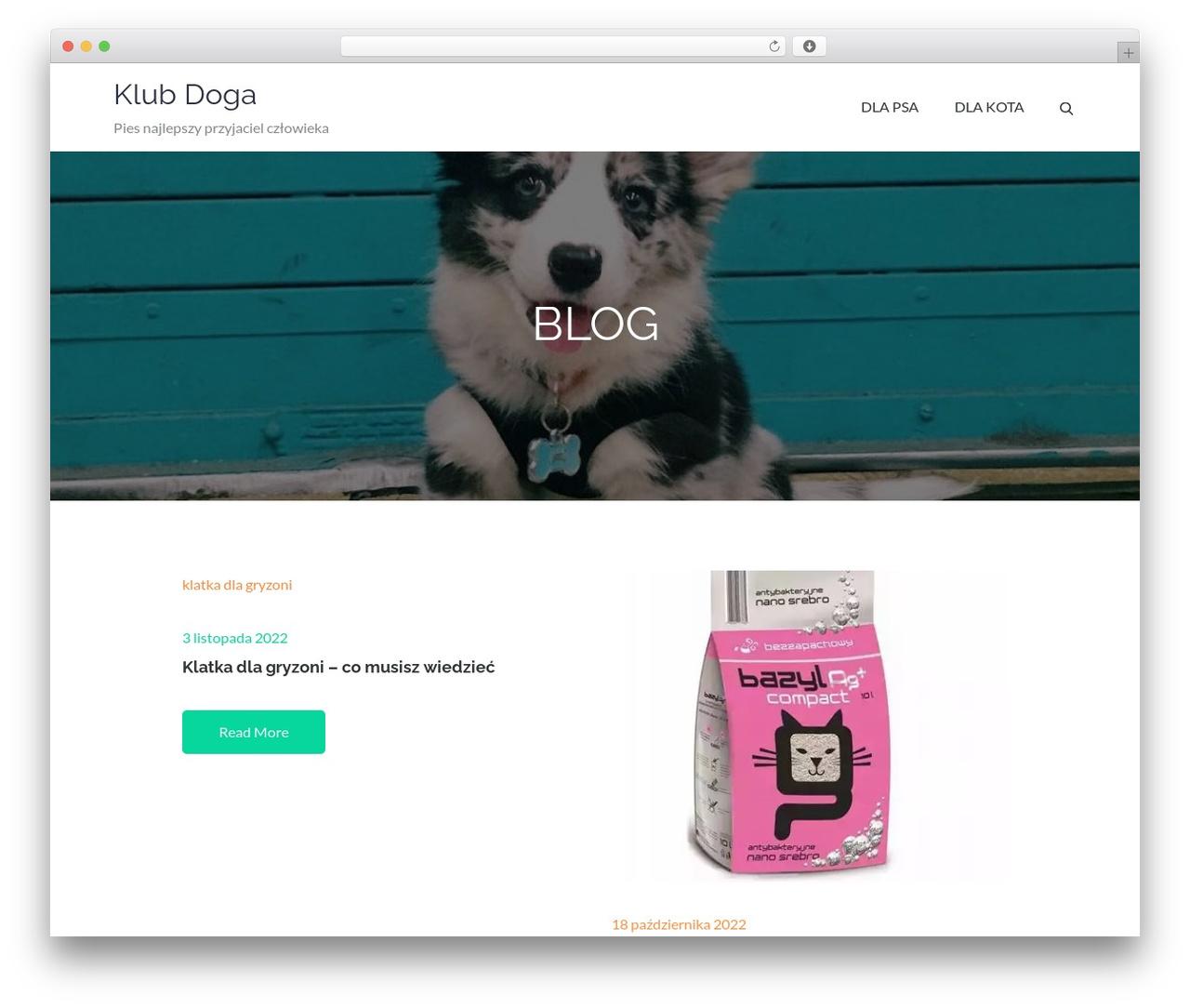 Pet Business WordPress template for business - klubdoga.pl