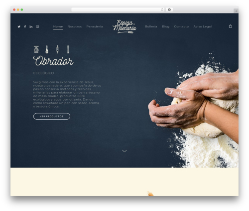 Salient WordPress website template - espigamilenaria.com
