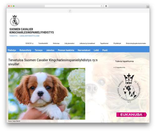 Sanitorium WordPress theme download - cavalieryhdistys.com