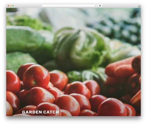 Twenty Seventeen WordPress theme - gardencatch.com