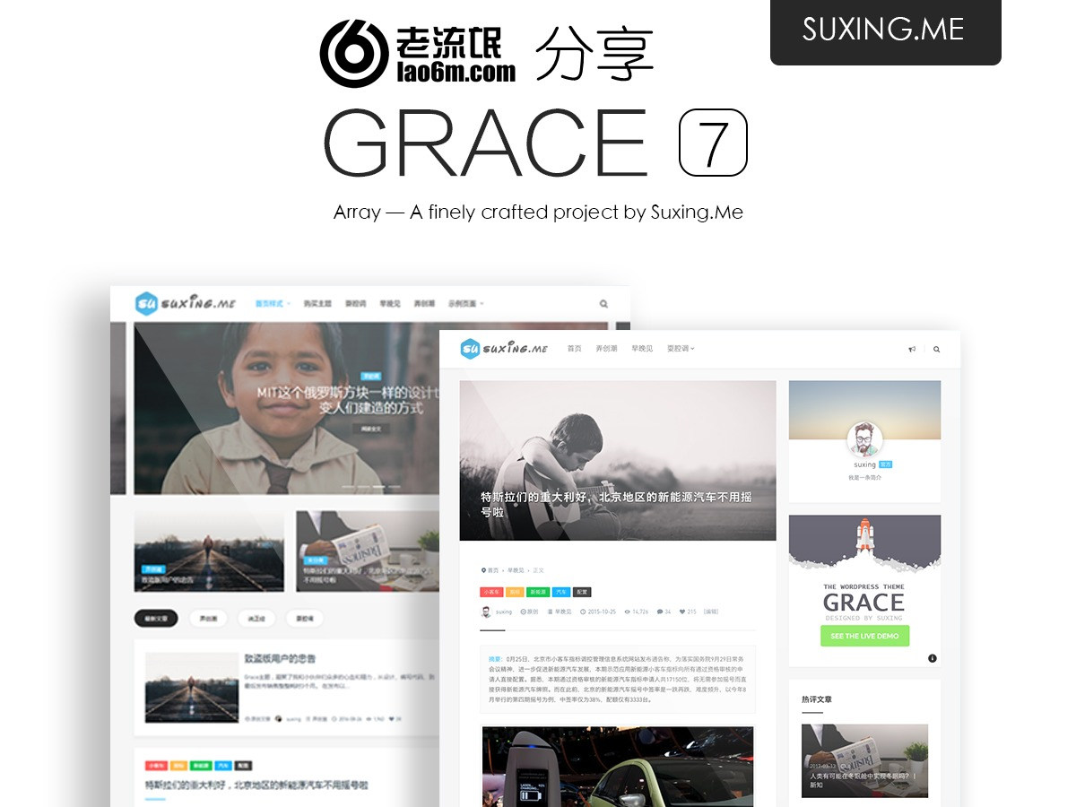 WordPress website template Grace