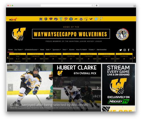 Barracuda WordPress template - waywaywolverines.com