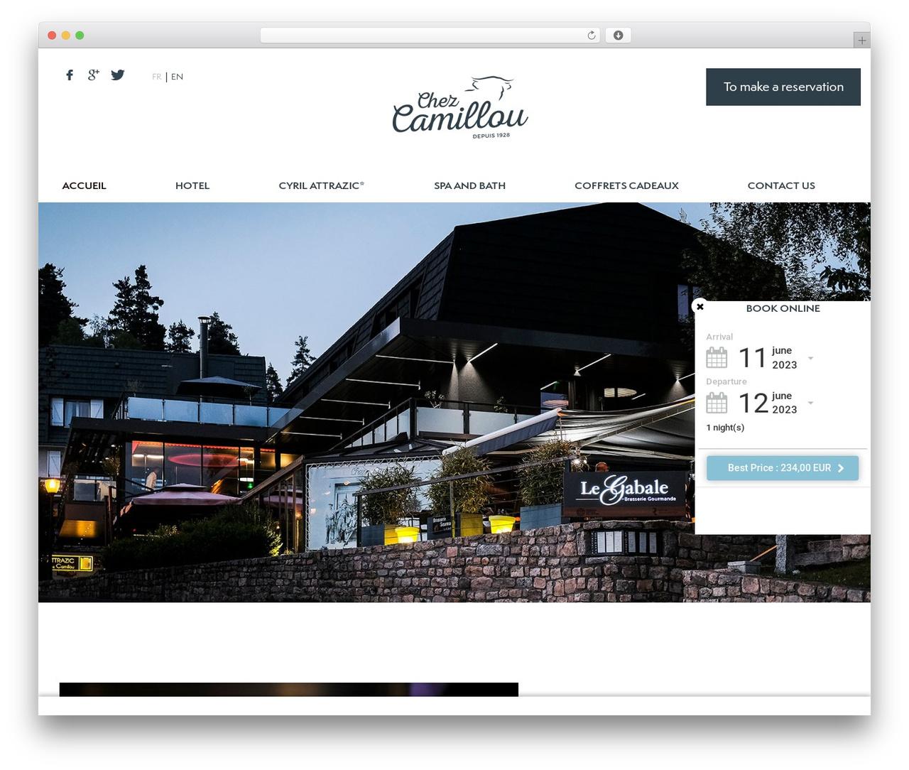 Theme WordPress Theme BMS - camillou.com