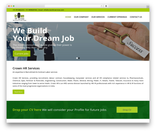 WordPress template nConfig - crownhrservices.com
