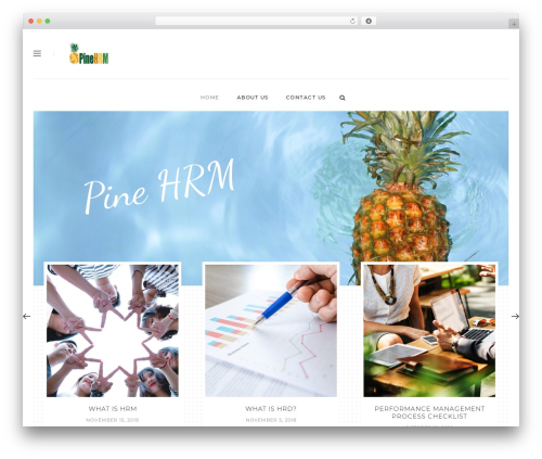 Malina theme WordPress - pinehrm.com