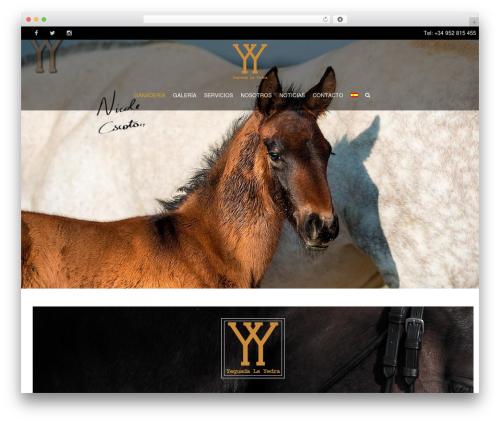 Theme WordPress HorseClub - caballopurarazapre.com