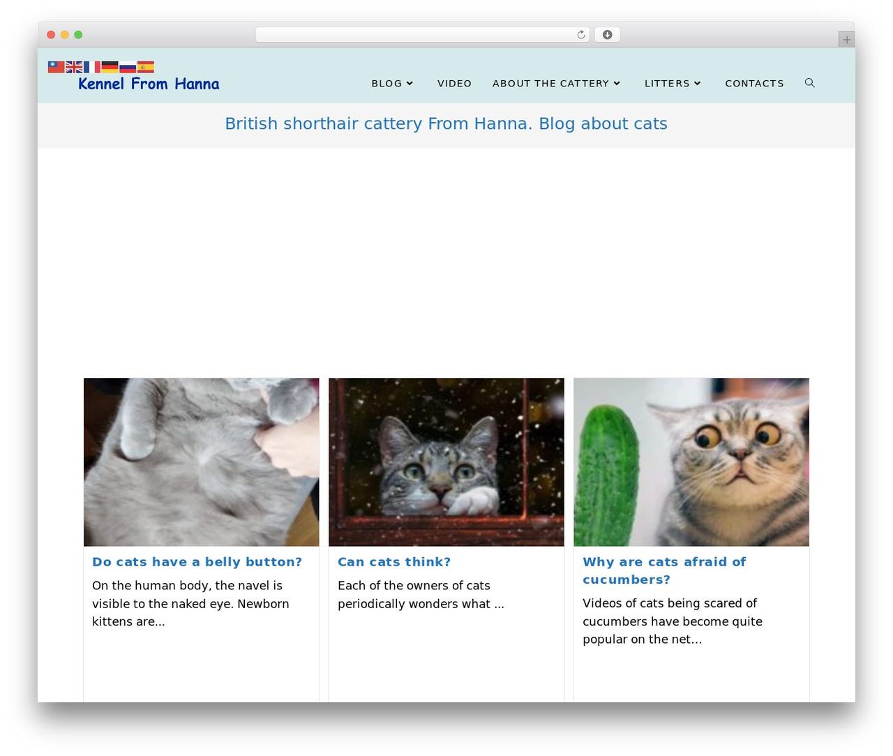 OceanWP template WordPress free - bri-hanna.com
