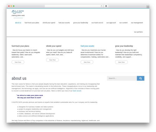WP theme Businessweb Plus - csuitedata.com