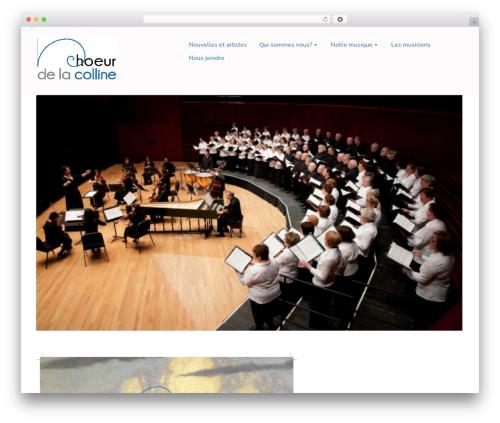 Singularity WordPress theme free download - choeurdelacolline.org