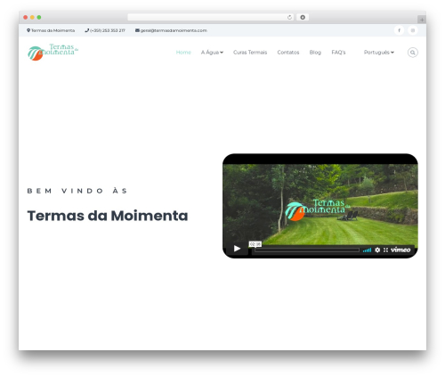 Flash best WordPress theme - termasdamoimenta.com