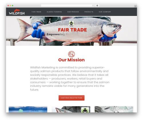 Helping Hand best WordPress theme - wildfishmarketing.com