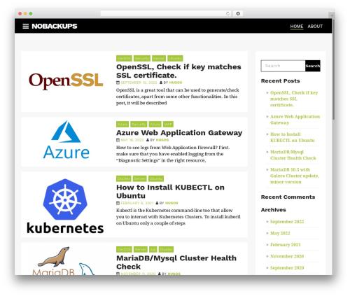 WordPress theme AppSetter - nobackups.com